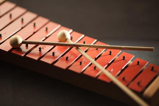 Strumenti musicali a percussione: elenco completo