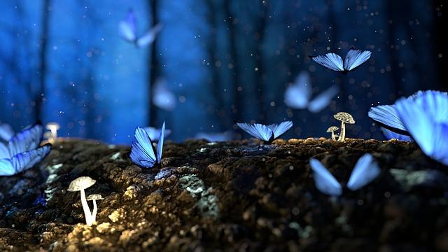Farfalla significato: che cosa significa e presagi