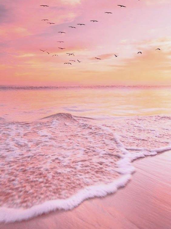 diverse sfumature del colore rosa