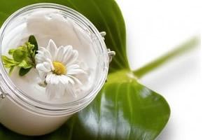 Bava di lumaca: un rimedio naturale per rendere la pelle più giovane